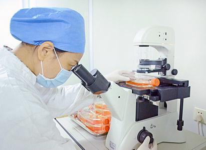 Terapi Biologi,kanker